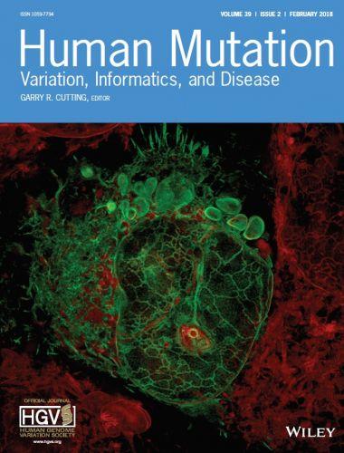 Immagine ad alta risoluzione di una cellula U2OS (osteosarcoma umano) trasfettata con il mutante del distroglicano Cys669Phe (in verde): il distroglicano mutato rimane intrappolato nel reticolo endoplasmatico (in rosso).