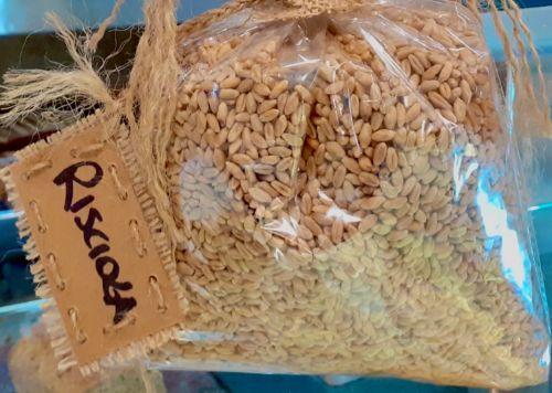 graditi semi risciola