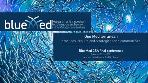 BlueMed final conference