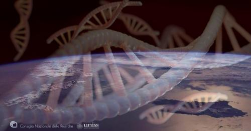 ProgeNIA/SardiNIA identifica bersagli terapeutici per le malattie autoimmuni