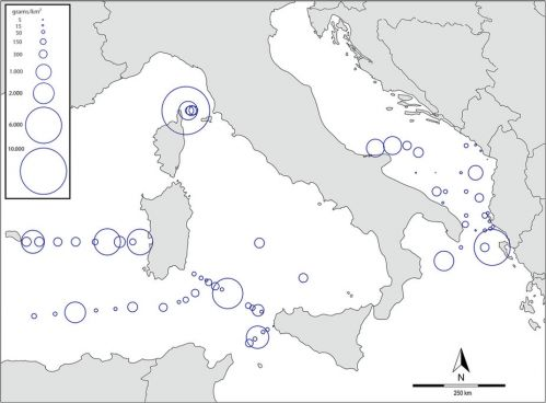 Mappa concentrazione microplastiche