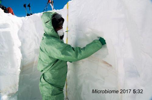 Campionamento della neve_Foto Microbiome 2017