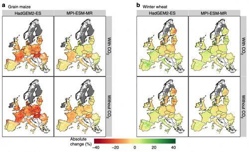Variazione delle perdite di resa dovute alla siccità in mais (a) frumento invernale (b) nel periodo 2040-2069