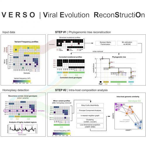 Il framework dell'algoritmo VERSO (Viral Evolution ReconStructiOn), pubblicato sulla rivista Patterns