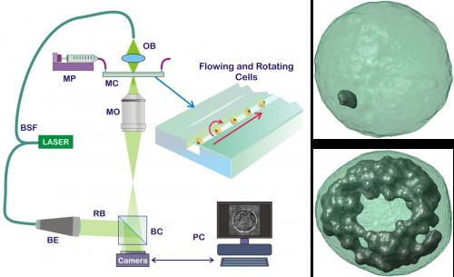 Schema del cito-tomografo olografico e tipiche immagini di output per la visualizzazione del nanografene internalizzato dalle cellule