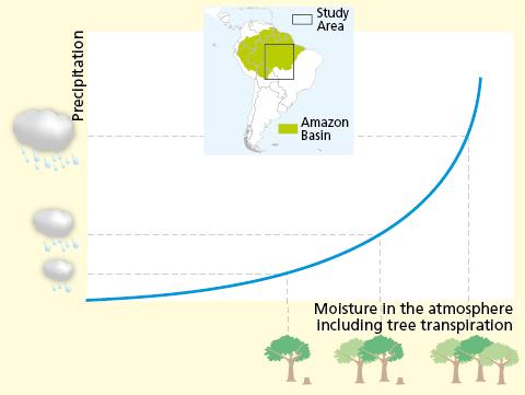 Gli effetti del disboscamento e della riforestazione sulla pioggia in Amazzonia