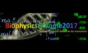 Biophysics@Rome