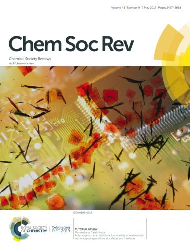 Front Cover  of the issue 9 Volume 48 of Chemical Society Review