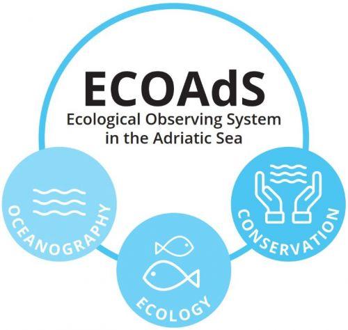 Schema ECOAdS con principali azioni dell'Osservatorio