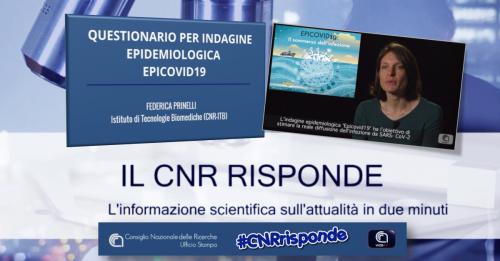 Federica Prinelli - Cnr risponde